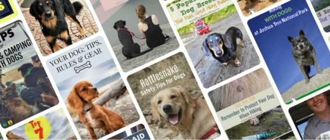Pinterest Images for You Did What With Your Wiener Blog